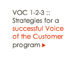 9 key strategies for a successful Voice of the Customer program